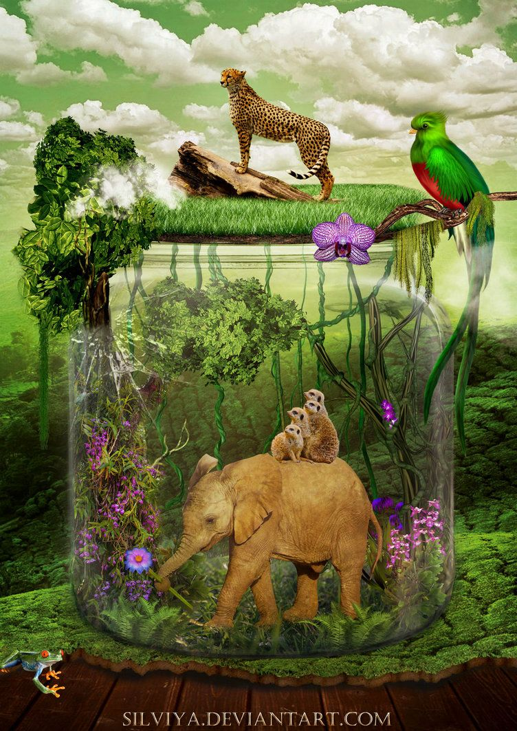 26 earth Song PNG cliparts for free download | UIHere