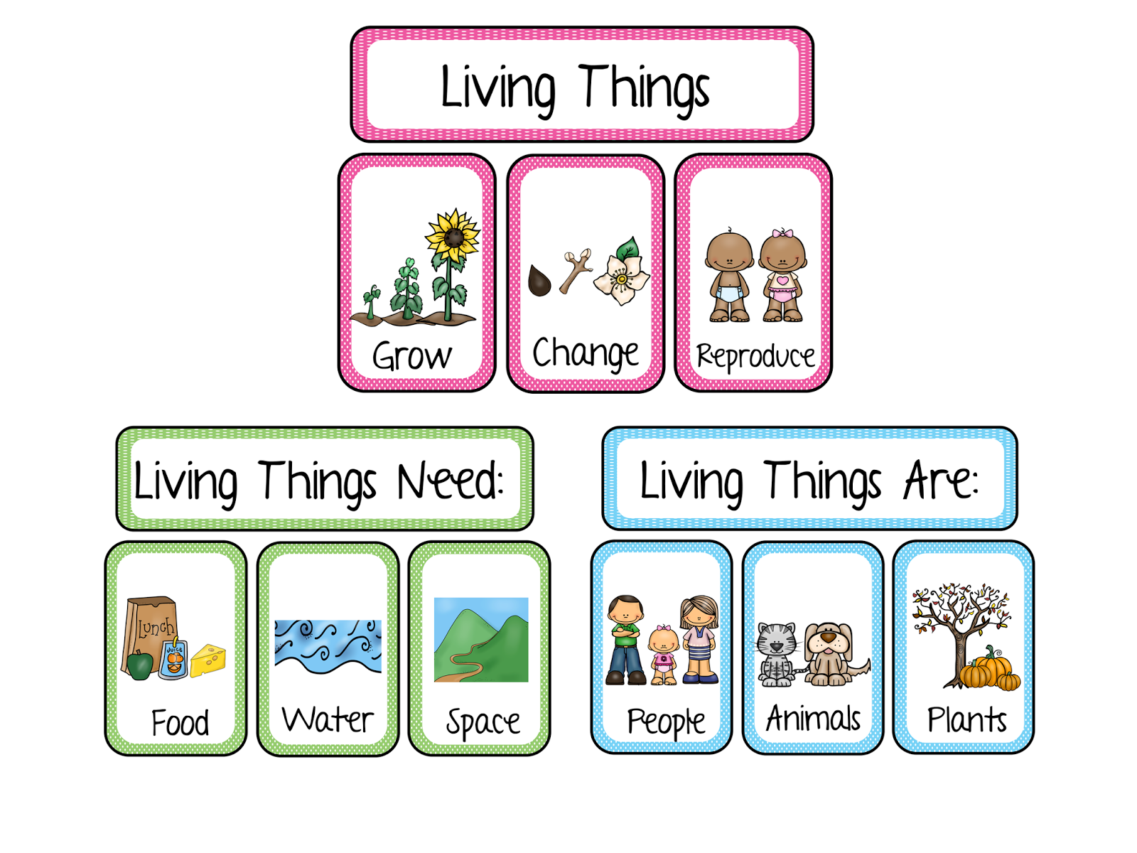 Living and NonLiving Kindergarten Vocabulary Sheet