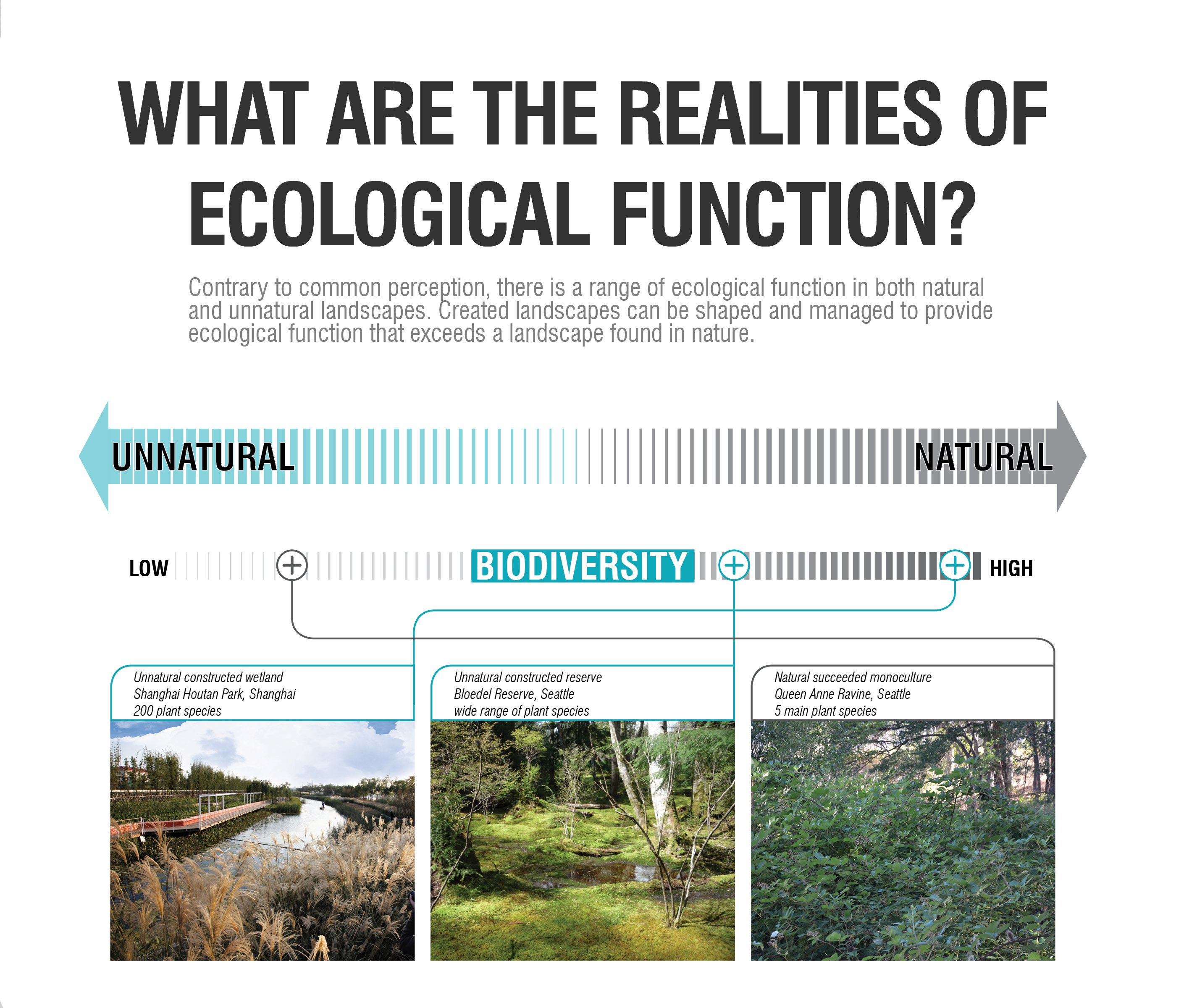 A Graphic From The Internship Report Titled Un Natural By