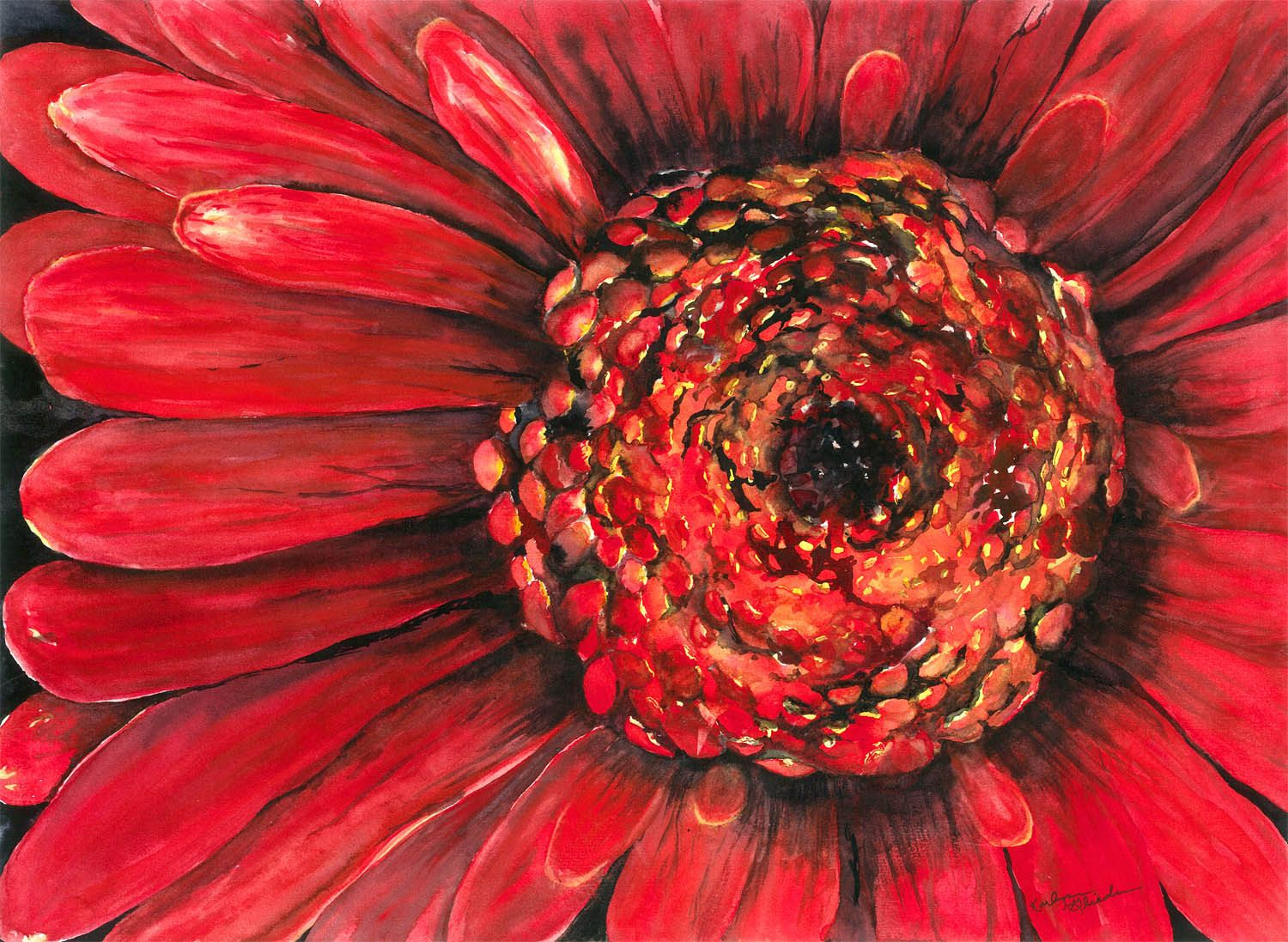 Large Red Flower Closeup Watercolor by KarlynnsArtfulGifts