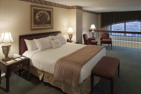 Dog Friendly Hotel In Columbus Oh Doubletree Guest Suites Columbus Room Reservations Doggeek Com Room Reservation Dog Friendly Hotels Hotel
