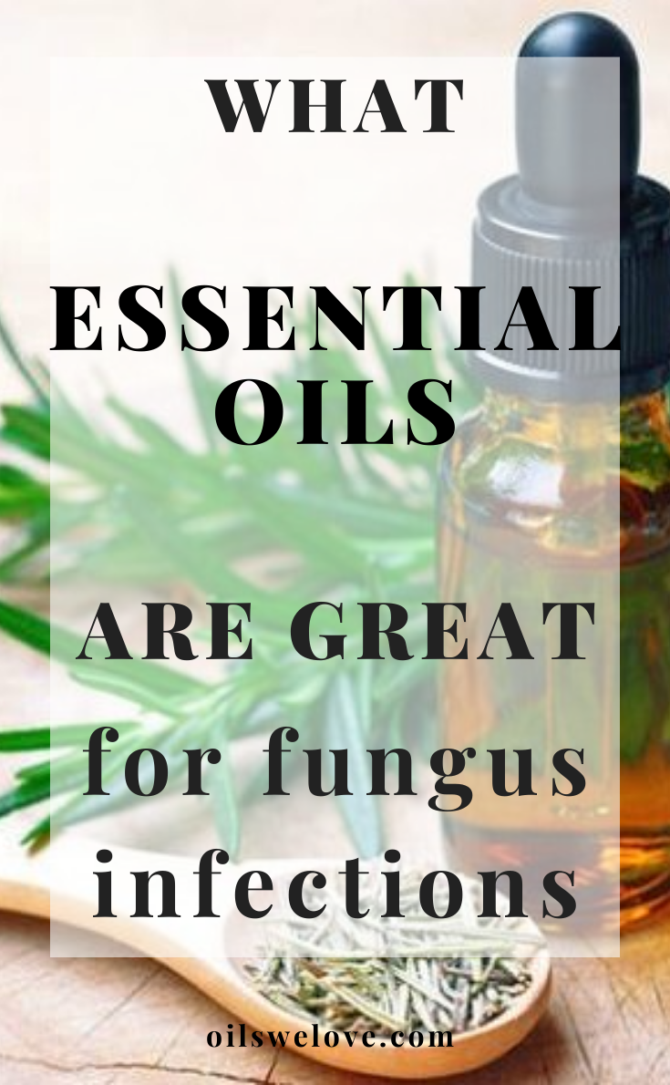 Essential Oils For Fungus Infections In 2020 Nail Fungus Essential Oils Antibacterial Essential Oils Essential Oils For Skin
