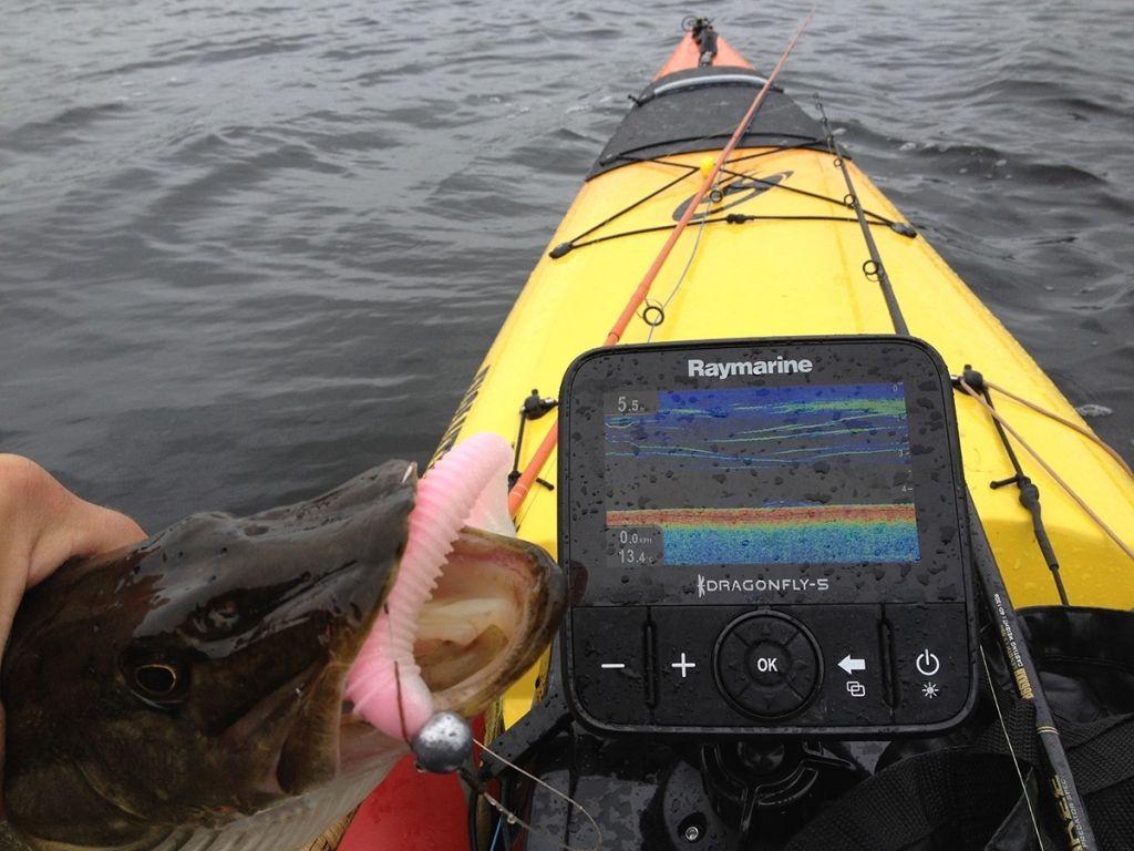 Best Side Imaging Scan Fish Finder 2020 Don T Buy Until You Read Fish Finder Image Best