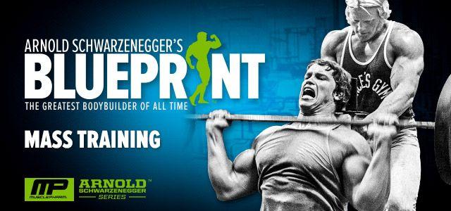 Arnold schwarzenegger blueprint trainer mass training overview bodybuilding arnold schwarzenegger blueprint trainer mass training overview malvernweather Choice Image