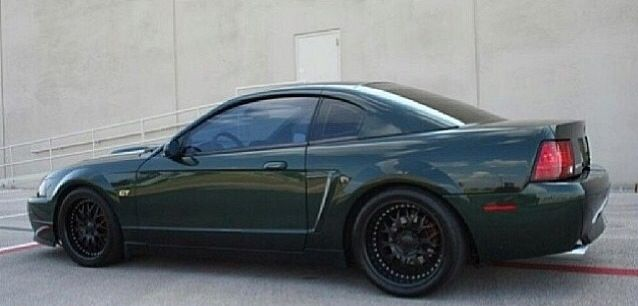 Edge Gt with Mustang Ford Mustang Images New