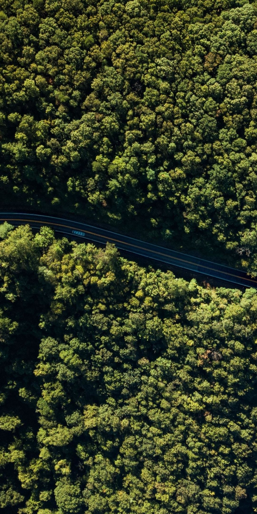 Aerial View Forest Green Trees Highway 1080x2160 Wallpaper Tree Photoshop Aerial View Aerial Images Hd wallpaper forest trees aerial view