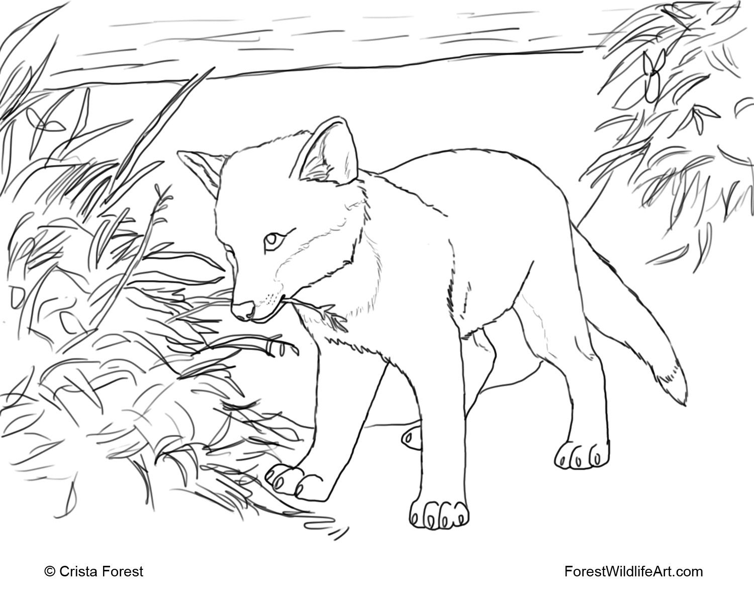Fox Printable Coloring Pages to Print Fox coloring page