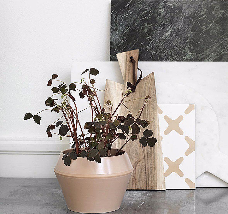 Traek Naturen Ind I Stuen Med Masser Af Planter Og Blomster Og Plant Dem I Flotte Enkle Urtepotter Flower Pots Vases Decor Flower Vases