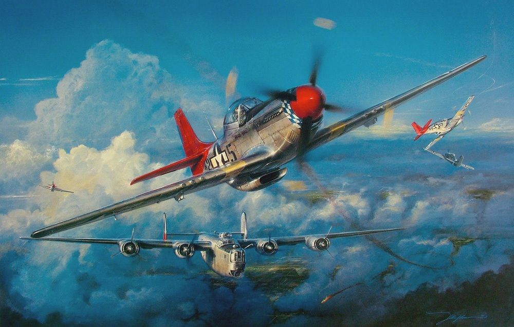 Red-Tail Angels, by John D. Shaw (Tuskegee Airmen P-51D ...