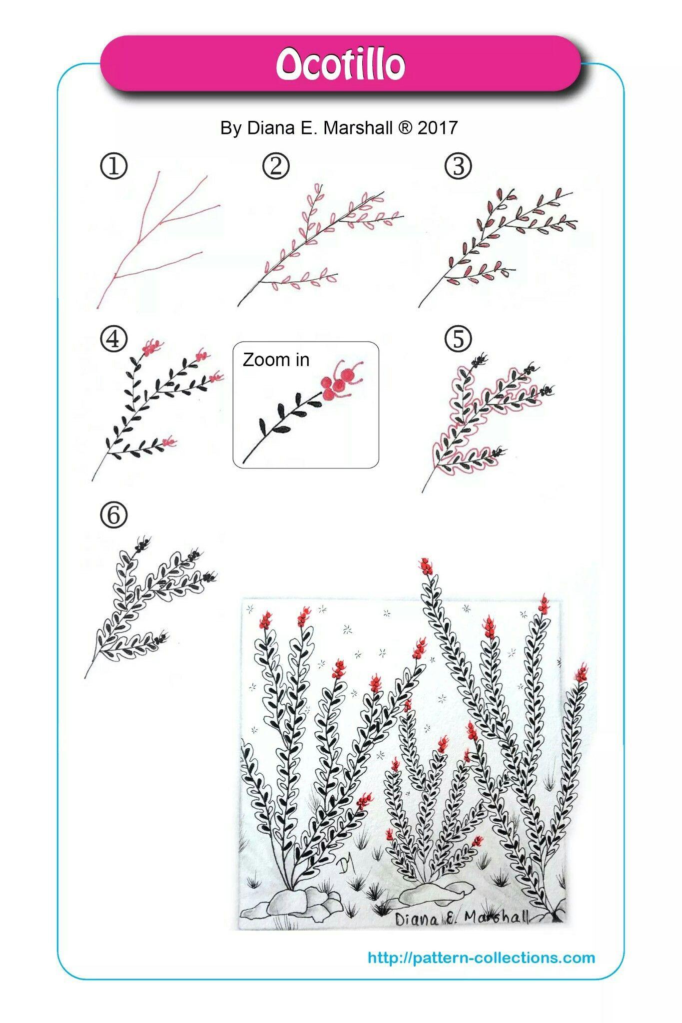 201707 ocotillo zentangle art zentangle patterns
