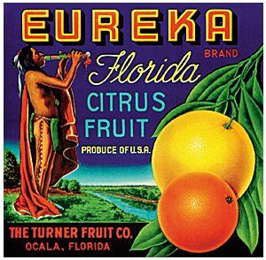 Frostproof Florida New Dawn Orange Citrus Fruit Crate Label Art Print