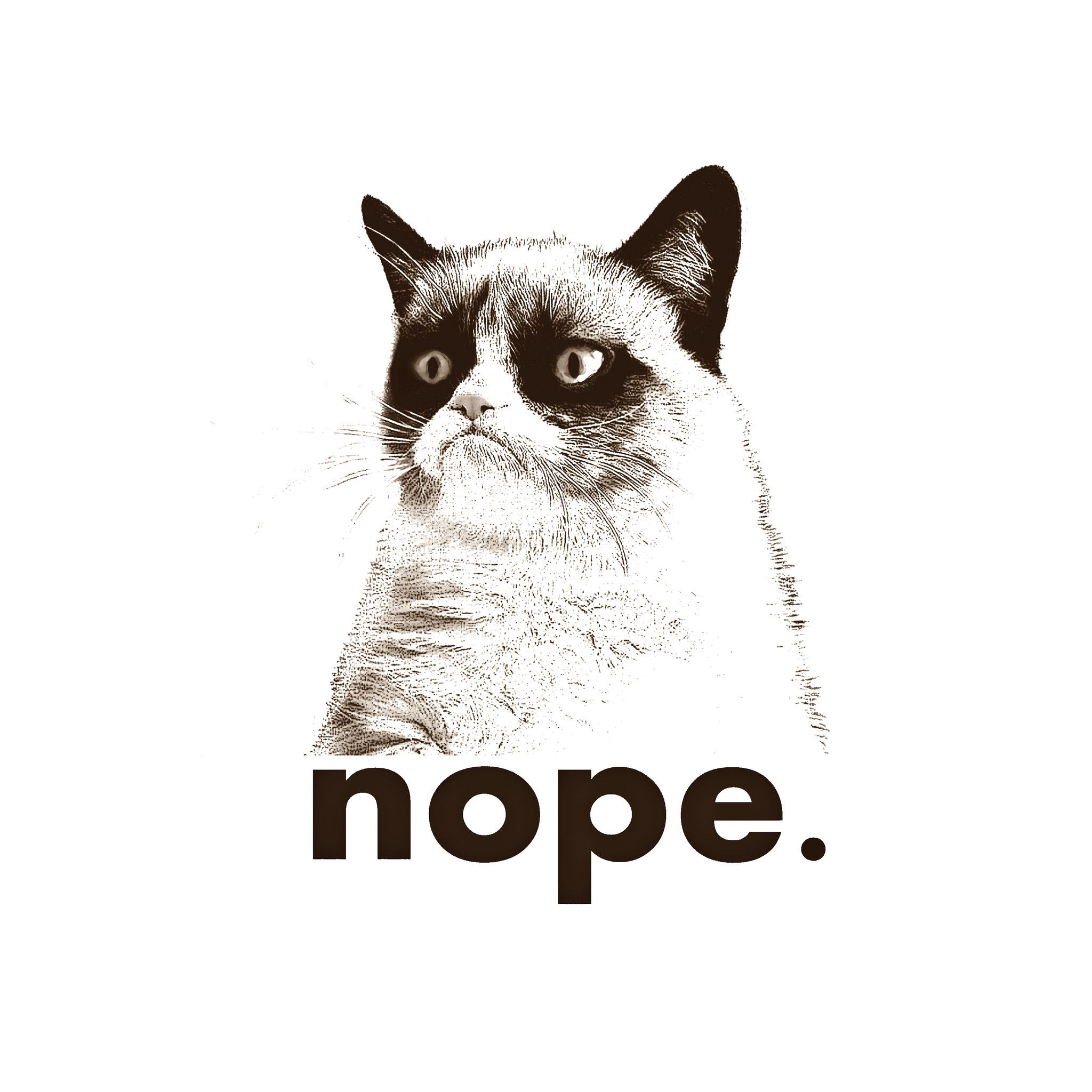 Free Grumpy Cat Wallpaper Tumblr