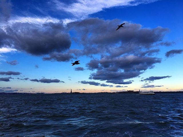 ©aubriebeardsley See this Instagram photo by @aubrie_in_nyc #newyork #newyorkcity #ny #nyc #birds #statueofliberty #clouds #sky #skylovers…