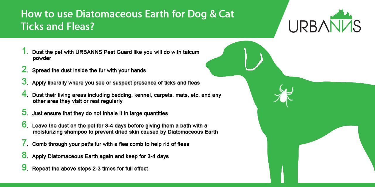 Diatomaceous Earth For Ticks And Fleas In Dogs And Cats Step By Step Guide 1 Dust The Pet With Urbanns Pest Guard Like You Will Do With Cat Steps Fleas Dog Cat