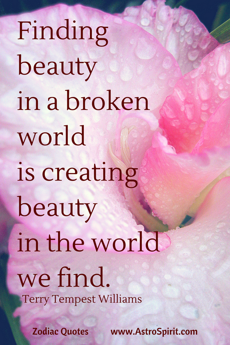 Zodiac quotes taurus meaningful quotes and gratitude terry tempest williams quote finding beauty in a broken world izmirmasajfo Gallery