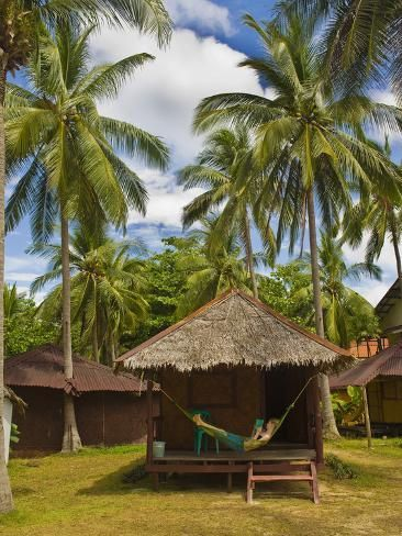 size: 24x18in Photographic Print: Tourist Relaxing in a Hammock on a Bamboo Beach Hut on the Thai Island of Koh Lanta, South Thailand by Matthew Williams-Ellis :