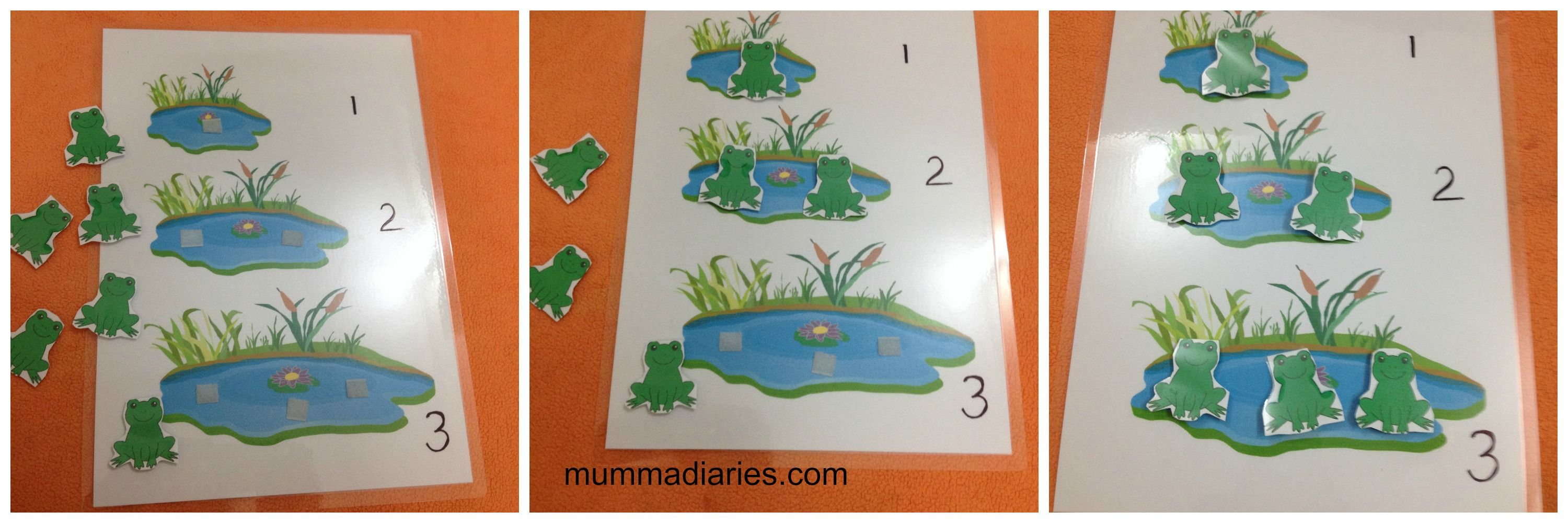 Frog Counting