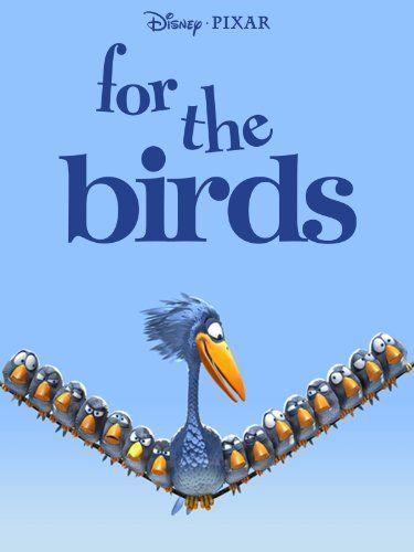 essay writing birds