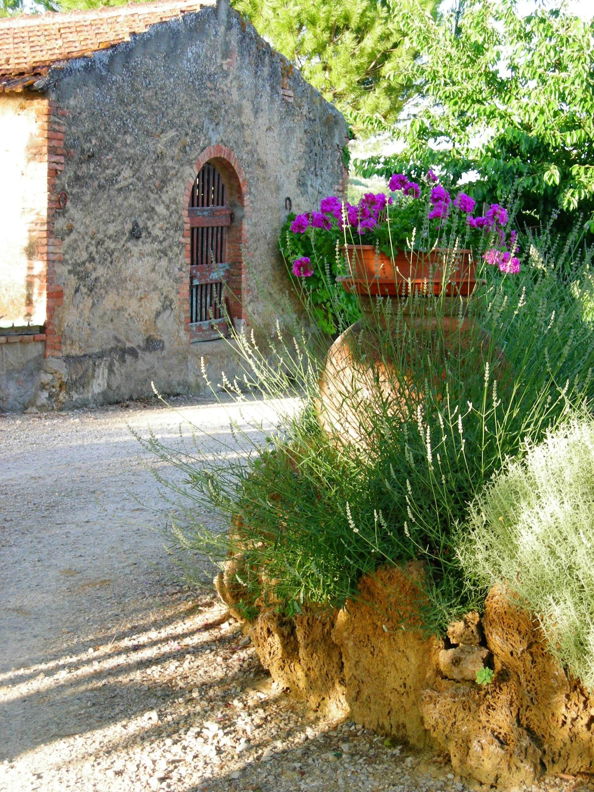 Tuscany: agriturismo Polveraia