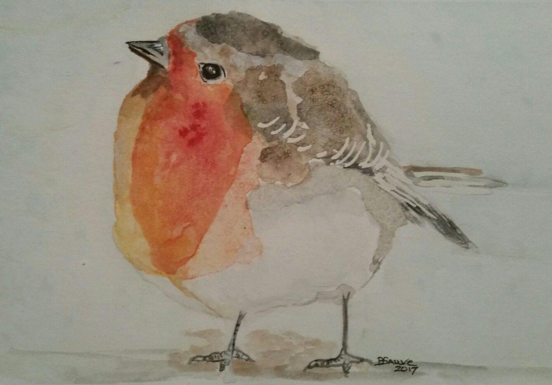 c215d9d7ba3ed Fat little Robin in loose watercolor. Brenda Sauve. Fat little Robin in  loose watercolor. Brenda Sauve Bird Paintings, Original ...