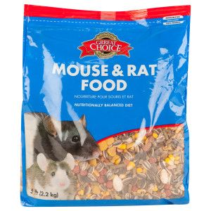 Image result for mouse food
