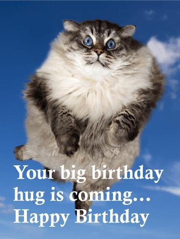 Big Birthday Hug Is Coming Funny Birthday Card Bday Cards
