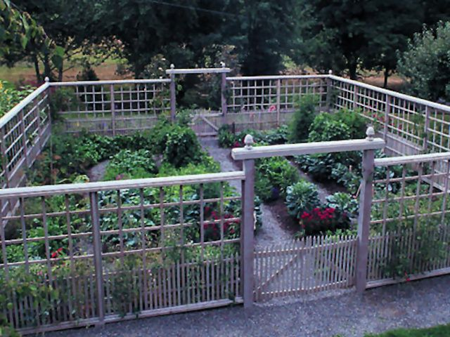 1000 images about Deer proof gardens on Pinterest Gardens