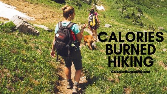 Calories Burned Hiking Calculator Burn calories, Hiking