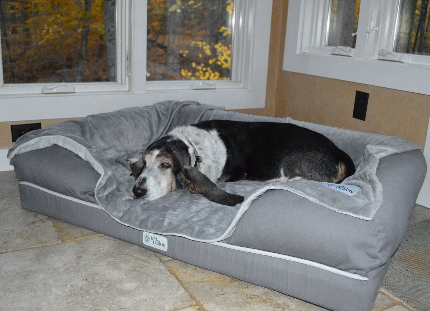 7 Of The Best Dog Beds For Large Dogs Cool Dog Beds Big Dog Beds Dog Bed
