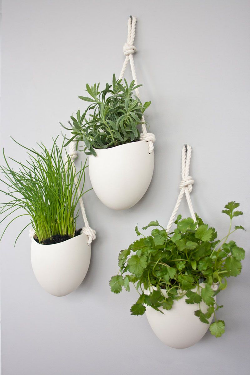 These White Porcelain Bowls Hang From Rope To Create Simple Contemporary Planters That Are Large Enough Plant A Variety Of Herbs
