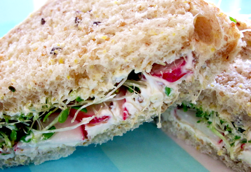 Cheese Sandwich with Sour Cream Spread, Radishes & Alfalfa Sprouts