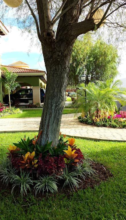 Jardines Frontales De Casas Modernas