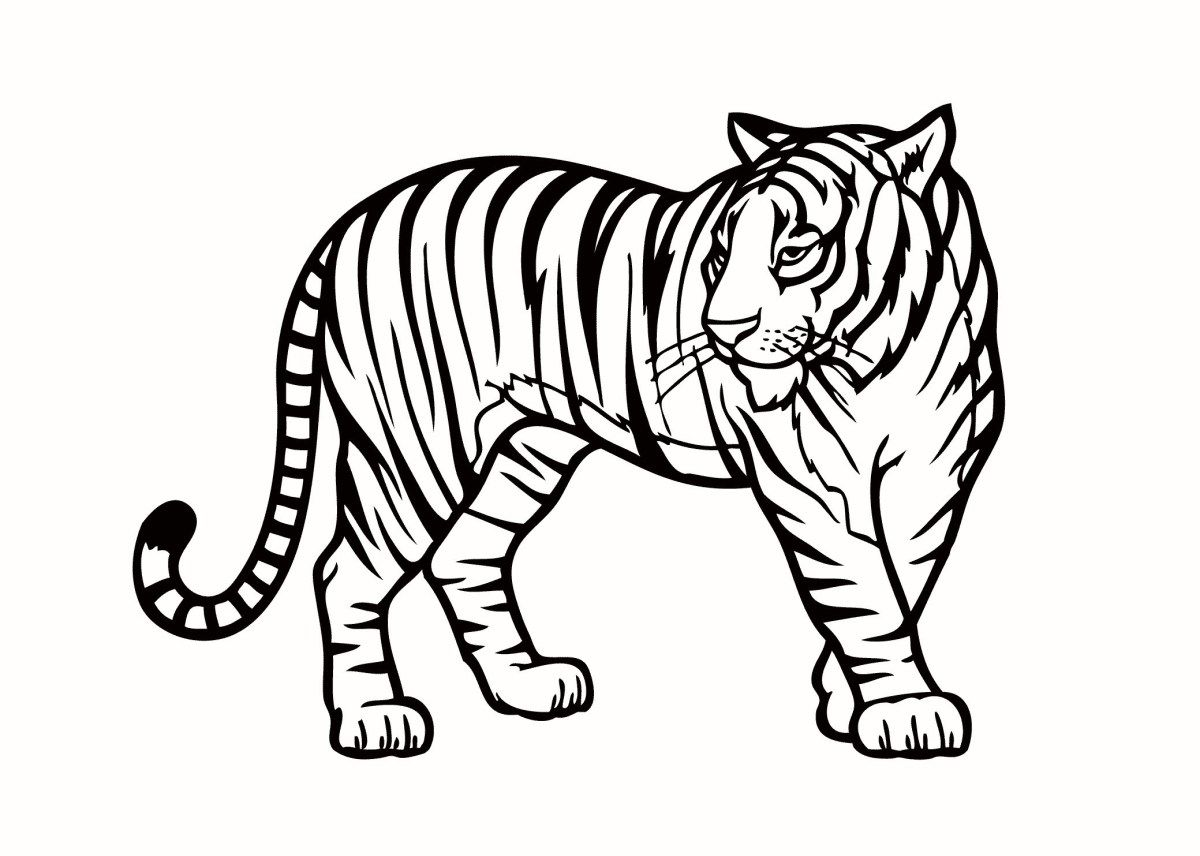 Jungle Animal Coloring Pages Jungle Animals Coloring Pages To Print Free Coloring Pages Entitlementtrap Com Zoo Animal Coloring Pages Coloring Pictures Of Animals Animal Coloring Books