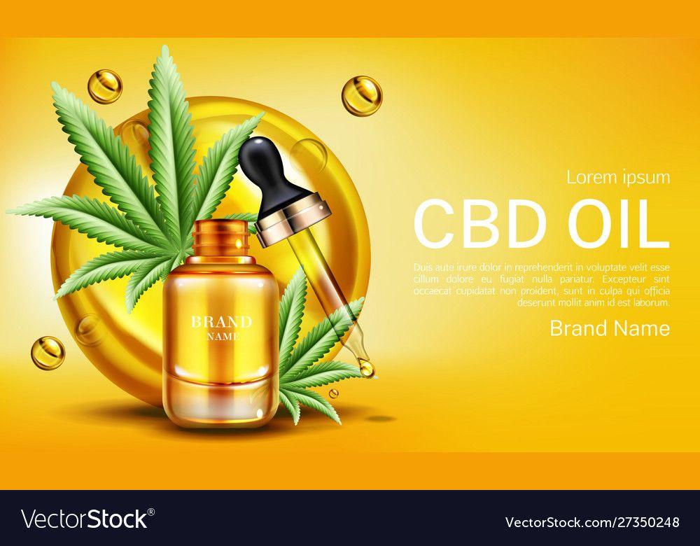 Cbd oil banner mockup hemp cannabinoid extract Vector Image