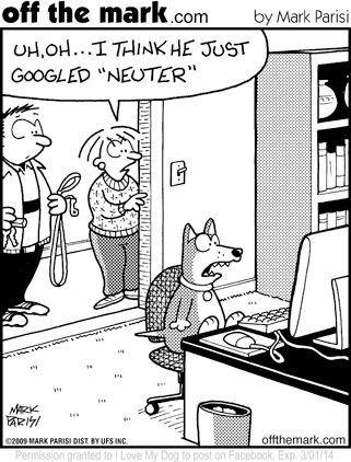 Pin By Wellpet Humane On Reducing Pet Overpopulation Funny Animal Memes Cartoon Jokes Dog Jokes