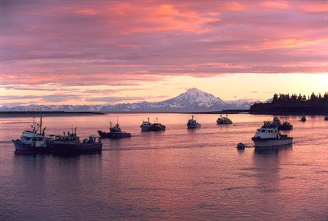 Fishing boats anchored in the kenai river as the sunset for Fishing company of alaska