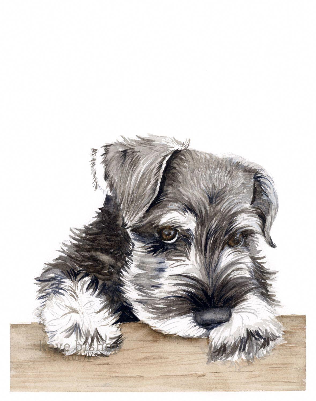 Mini Schnauzer Watercolor Painting Animal Art Schnauzer Painting Schnauzer Watercolor Schnauzer Art Dog Art Schnauzer Schnauzer Print Schnauzer Drawing Schnauzer Art Watercolor Dog