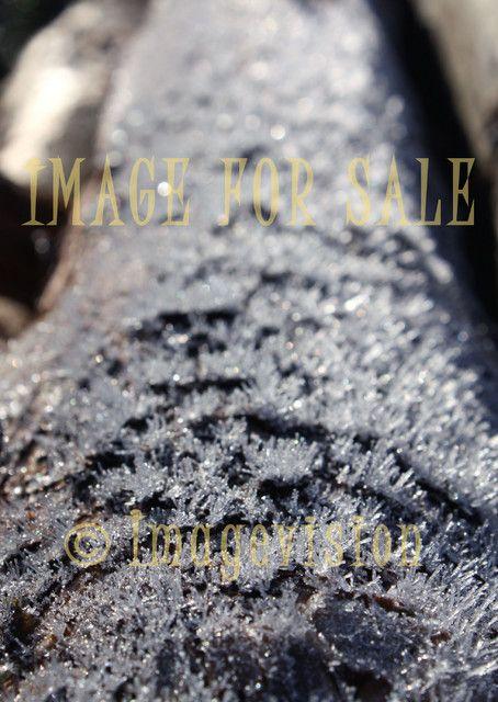 for sale glittering frost sticks on tree trunk