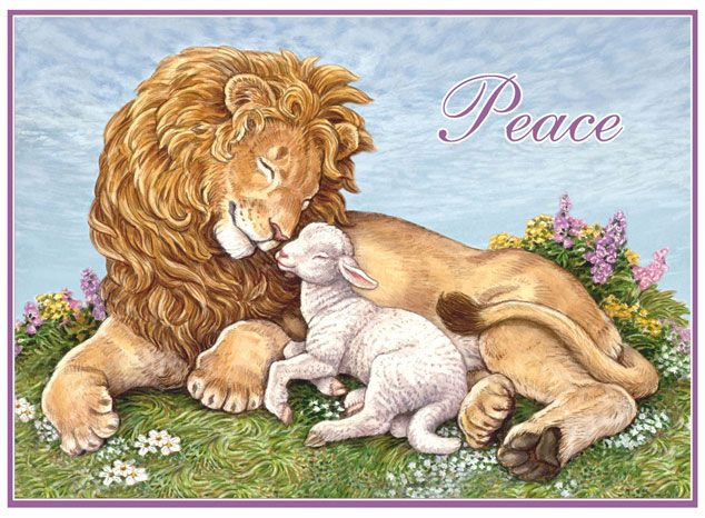 lion+and+lamb+images   Lion and Lamb Card