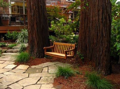 Two Redwood Grove Landscapes Part 2 Redwood Landscaping Backyard Landscaping Landscape Trees
