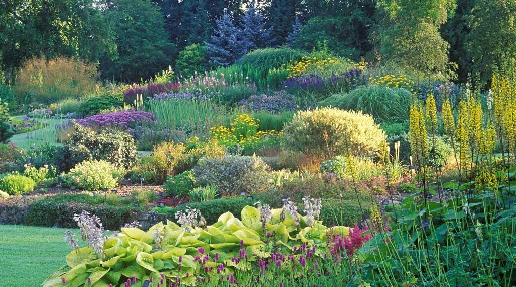 The Gardens Bressingham Gardens Beautiful Gardens Garden Design Magazine Landscape Design