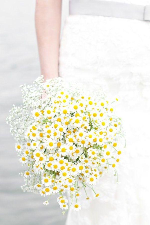 Bouquet Margherite Sposa.Pin Di Ines Pinilla Romero Su Daisy O Margaritas Mi Flor Favorita