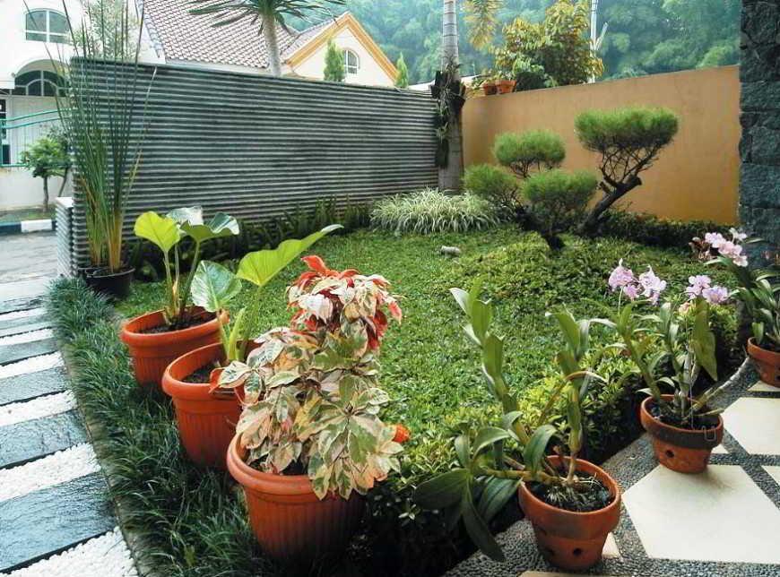 Taman Bunga Belakang Rumah