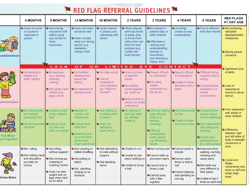 Red Flag Referral Guidelines Child Development Chart Child Development Stages Child Development