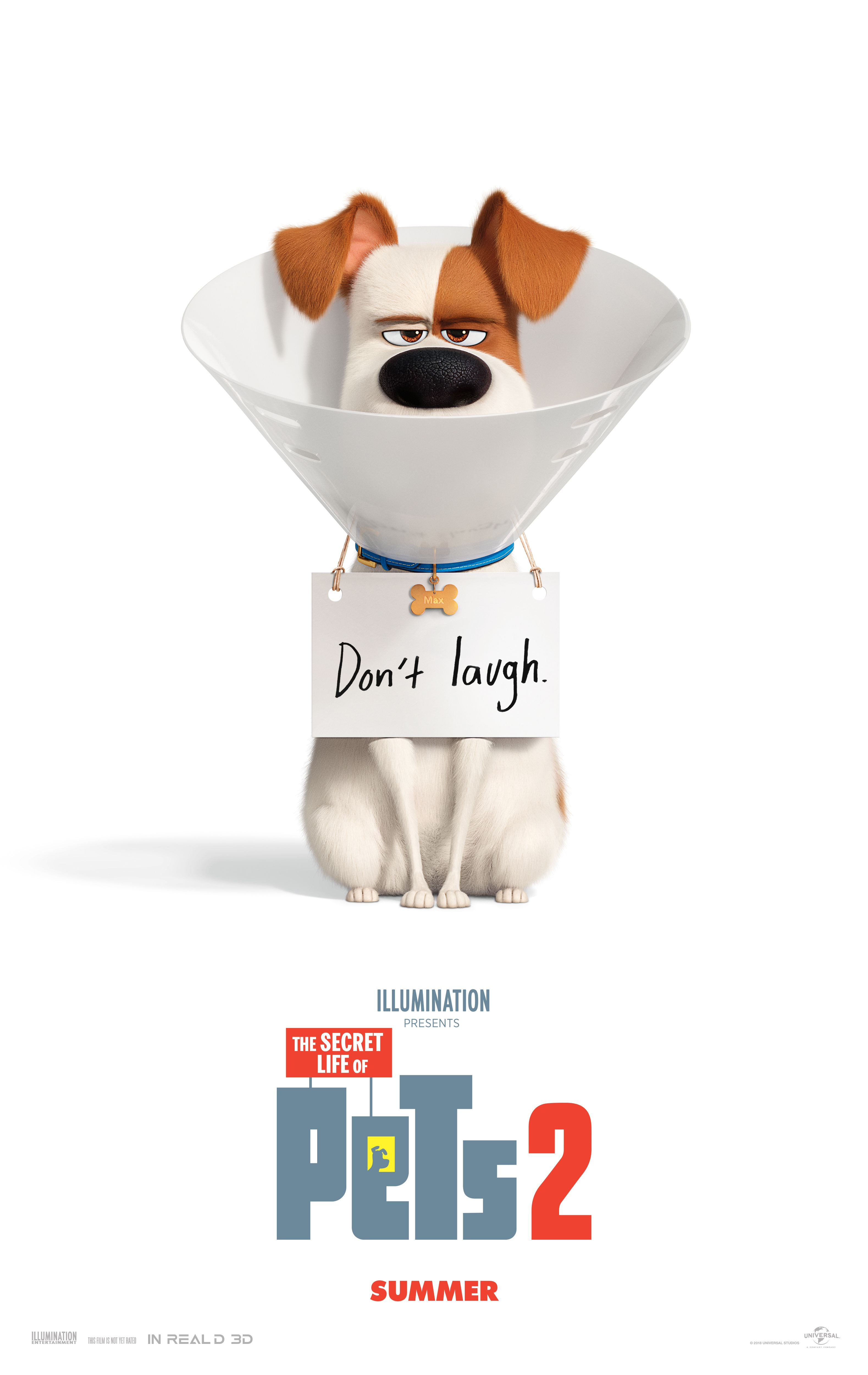 The Secret Life Of Pets 2 In Theaters June 7 2019 Secret Life Of Pets Secret Life Full Movies Download