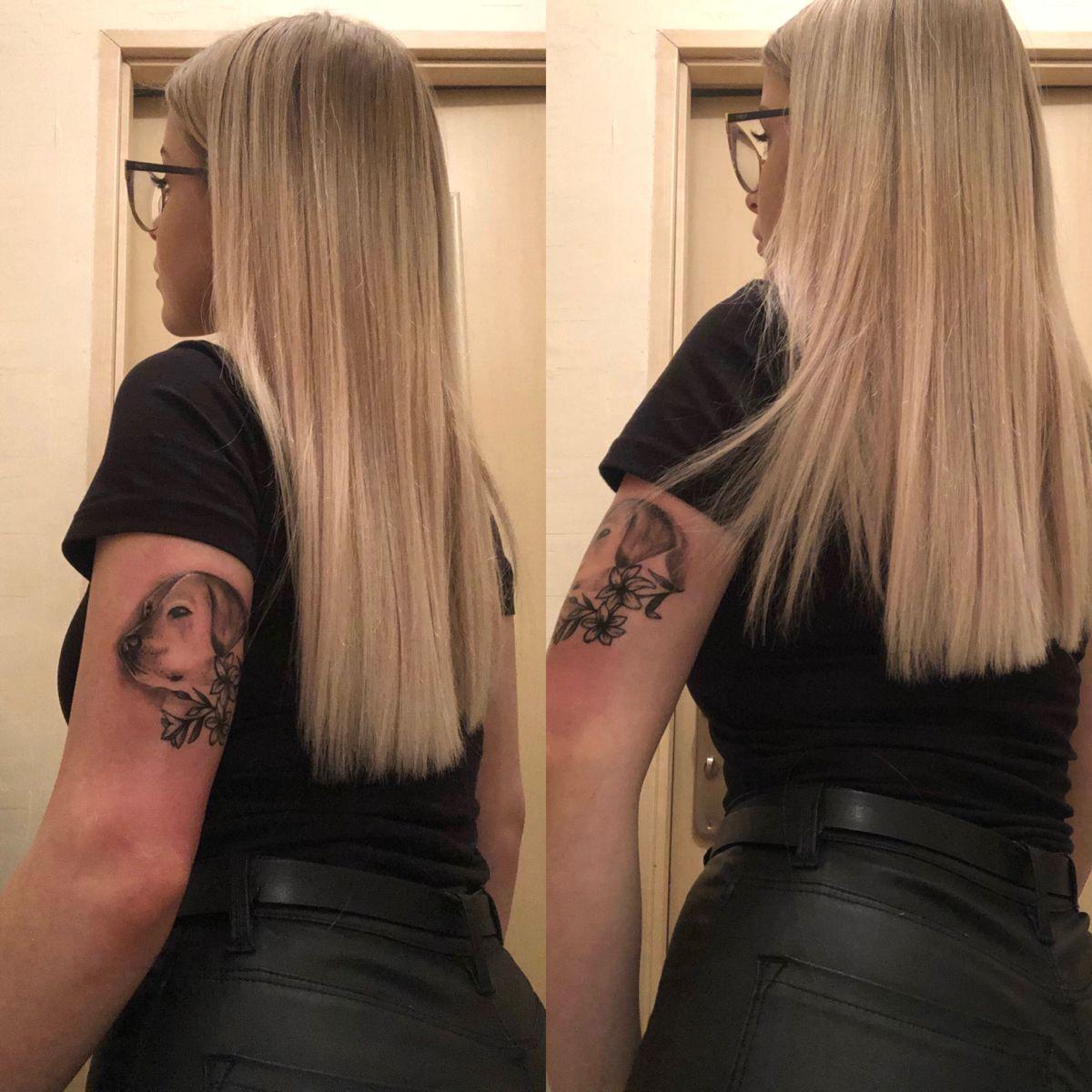 #tattoo #tattoosforwomen #tattooarm #tattoodog #tattooinspiration #tattoogirl #labrador