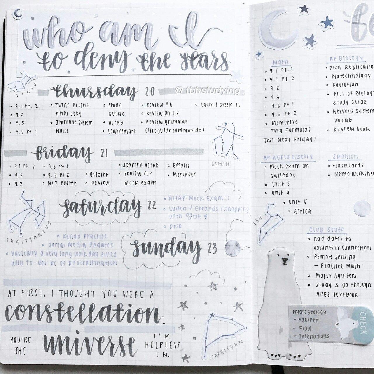 Pin by Hannah En on bullet journal goals | Bullet journal aesthetic