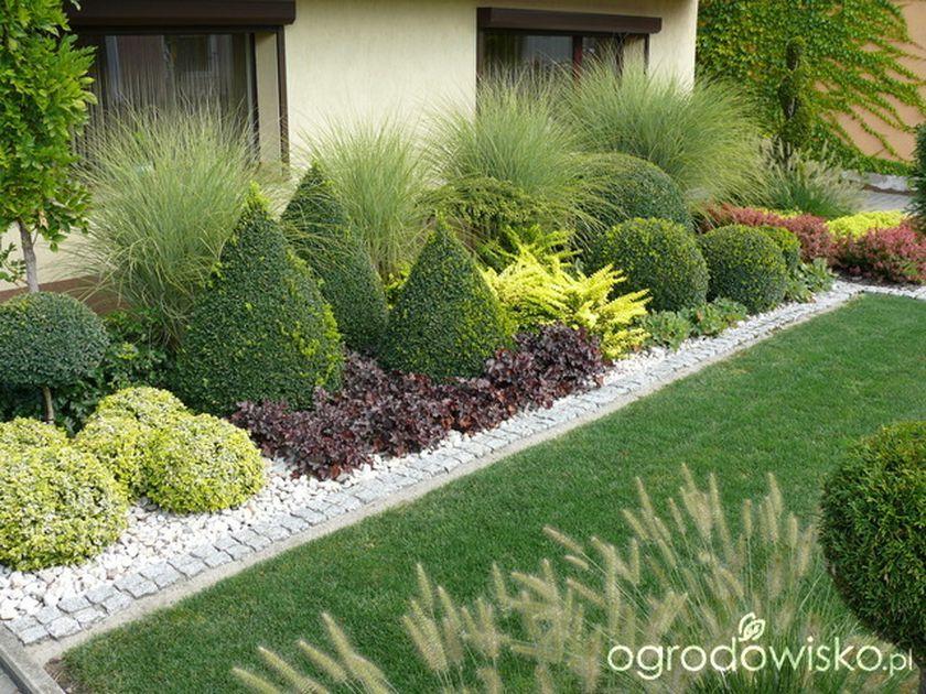 50 Ideas To Make Evergreen Landscape Garden On Your Front Yard Evergreen Landscape Front Yard Garden Front Yard Landscaping Design