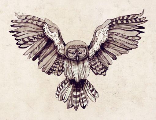 A Natureza De Zso Desenhos De Tatuagem De Coruja Imagens De