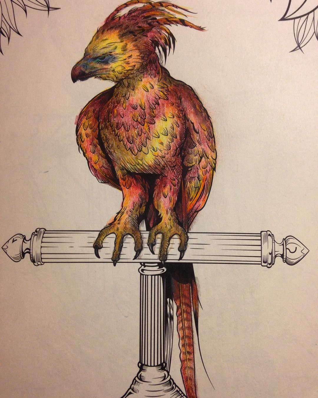 Currently Working On Fawkes Harrypotter Harrypottercoloringbook Phoenix Adultcoloringbook Art